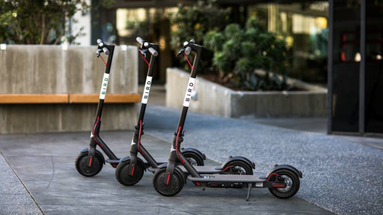 What stores have electric scooters